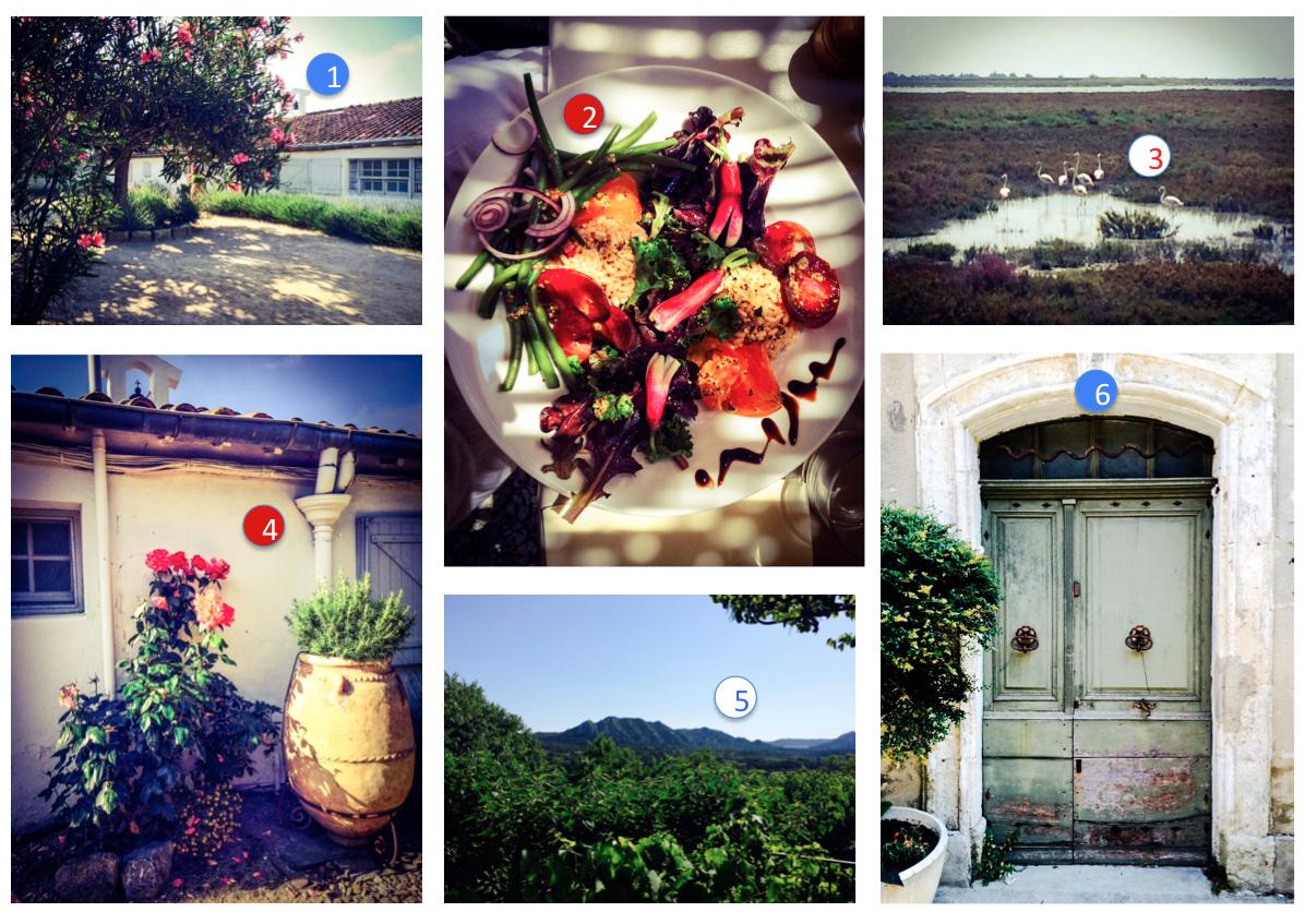 anna_wand_Blog_Provence_Flamingos_Wandsticker