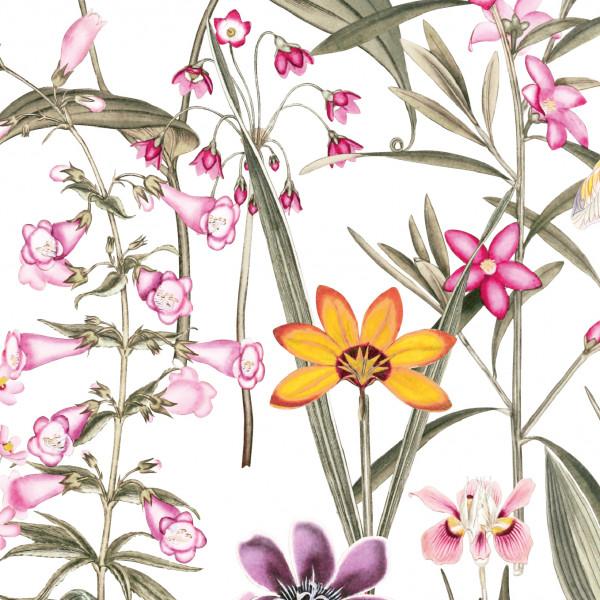 anna wand_design bordueren borten blüten blumen rosaselbstklebend design modern wohnzimmer schlafzimmer küche