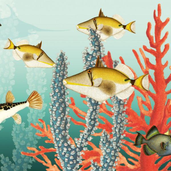 anna wand Bordüre Wandbordüre Borte Wanddeko Fische Unterwasser Hai Walhai Kinderzimmer Junge Mädchen_B
