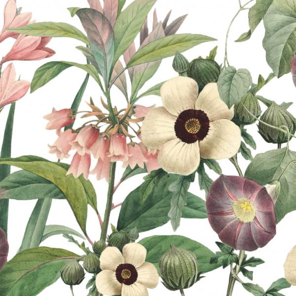 """Selbstklebende Bordüre """"Wildblumen"""" Rosa / Grün auf Weiss"""