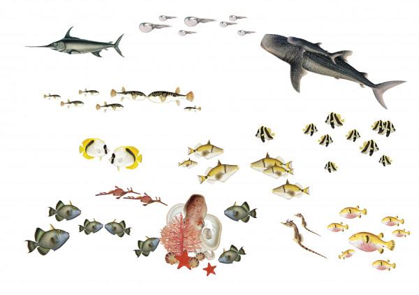 anna wand MeeretiereSticker wandsticker wandtattoos fische wahlhai hai korallen seepferdchen junge mädchen kinderzimmer.