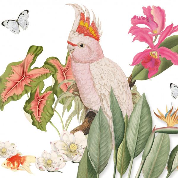 anna wand bordüre borte selbstklebend paradies kakadu flamingo natur küche wohnzimmer schlafzimmer flur